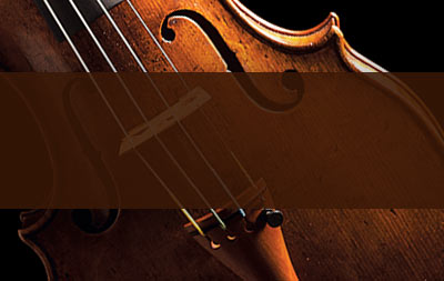 Typhonic Samples Free Samples Download Violin Movements Instrument Sounds